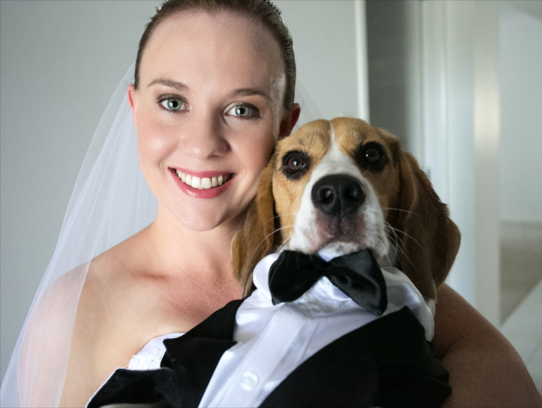 Natural Wedding Photography, Brisbane Wedding Photography, Pets and Wedding Photography